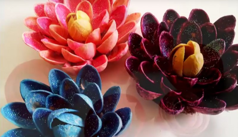 Fun Craft Use Pistachio Shells To Make