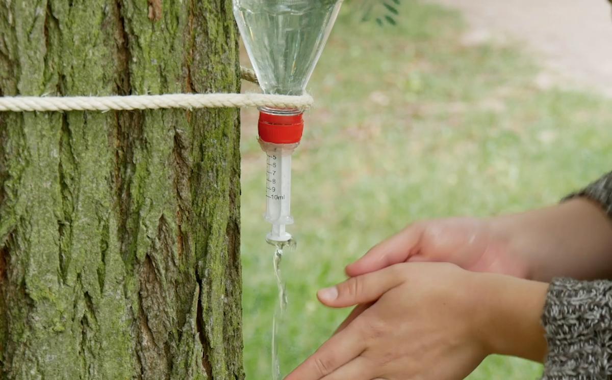 Plastic Bottle Camping Hacks