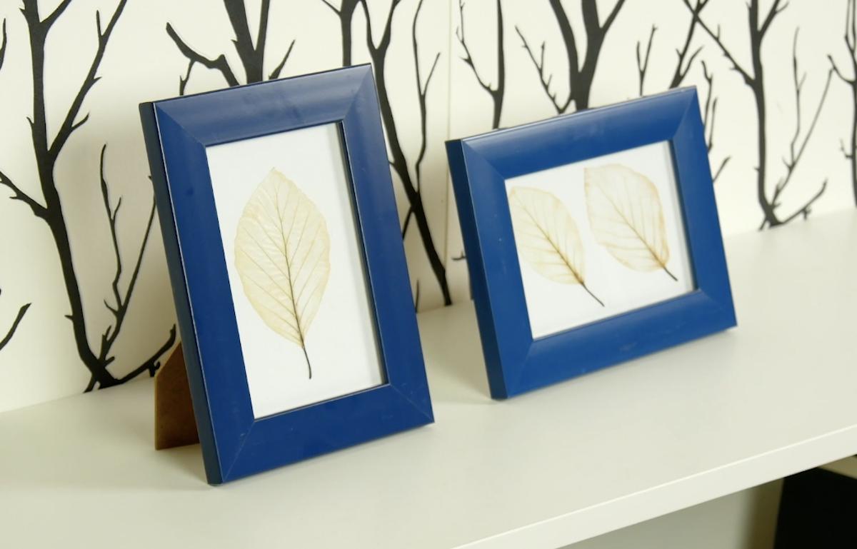 DIY Skeleton Leaves